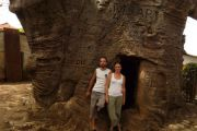 314 visiteurs enregistrés au premier trimestre 2017 au site du baobab de Stanley à Boma