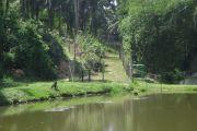 Bassin du Congo: neuf pays africains s'engagent pour une gestion durable des eaux