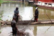 La pêche restera longtemps artisanale au quartier Kinsuka