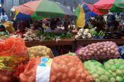 La consommation alimentaire des Congolais estimée à 15 millions de Kg des produits vivriers par jour