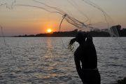 RDC-Ouganda : harmonisation et validation de textes réglementaires de la pêche sur les lacs Albert et Edouard