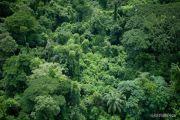L'Etat congolais risque de perdre 22 millions USD