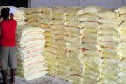 La minoterie d'aliments pour lapins de N'sele produira 50 tonnes d'aliments par jour